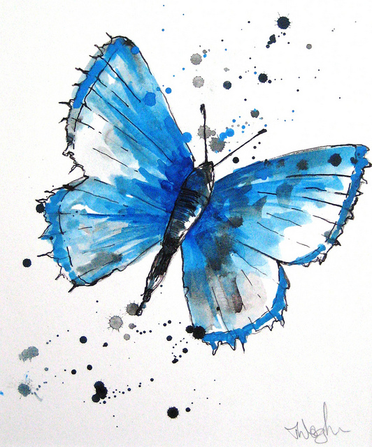 Aquarela - Blue Butterfly - Thracey Waghorn